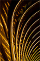 abstract foto -Hotel Intercontinental Bucuresti